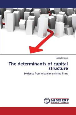 The Determinants of Capital Structure (Paperback)