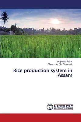 Rice Production System in Assam (Paperback)