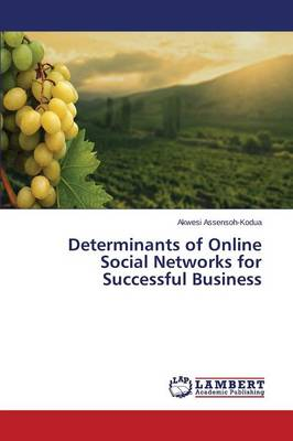 Determinants of Online Social Networks for Successful Business (Paperback)