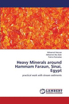 Heavy Minerals Around Hammam Faraun, Sinai, Egypt (Paperback)