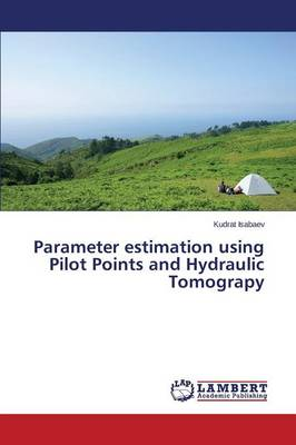 Parameter Estimation Using Pilot Points and Hydraulic Tomograpy (Paperback)