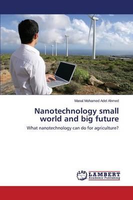 Nanotechnology Small World and Big Future (Paperback)