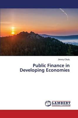 Public Finance in Developing Economies (Paperback)