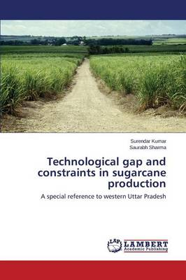 Technological Gap and Constraints in Sugarcane Production (Paperback)