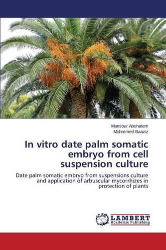 In Vitro Date Palm Somatic Embryo from Cell Suspension Culture (Paperback)