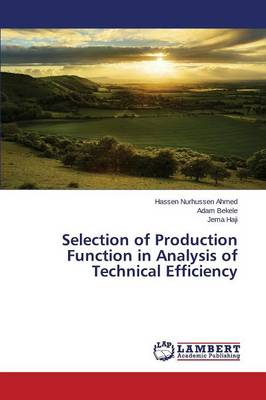 Selection of Production Function in Analysis of Technical Efficiency (Paperback)