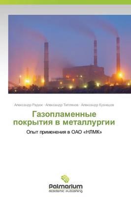 Gazoplamennye Pokrytiya V Metallurgii (Paperback)