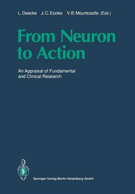 From Neuron to Action: An Appraisal of Fundamental and Clinical Research (Paperback)