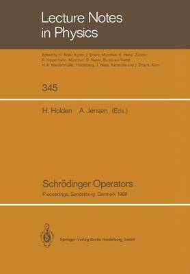 Schroedinger Operators: Proceedings of the Nordic Summer School in Mathematics Held at Sandbjerg Slot, Sonderborg, Denmark, August 1-12, 1988 - Lecture Notes in Physics 345 (Paperback)
