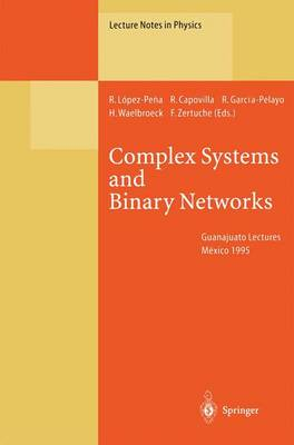 Complex Systems and Binary Networks: Guanajuato Lectures, Held at Guanajuato, Mexico, 16 - 22 January 1995 - Lecture Notes in Physics 461 (Paperback)