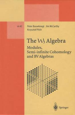 The W3 Algebra: Modules, Semi-infinite Cohomology and BV Algebras - Lecture Notes in Physics Monographs 42 (Paperback)
