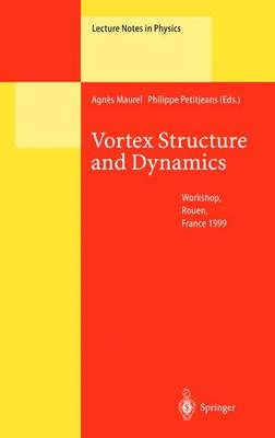 Vortex Structure and Dynamics: Lectures of a Workshop Held in Rouen, France, April 27-28, 1999 - Lecture Notes in Physics 555 (Paperback)