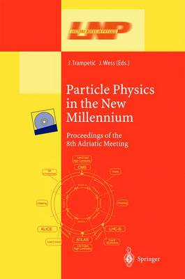 Particle Physics in the New Millennium: Proceedings of the 8th Adriatic Meeting - Lecture Notes in Physics 616 (Paperback)
