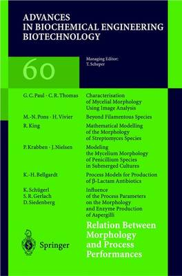 Relation Between Morphology and Process Performances - Advances in Biochemical Engineering/Biotechnology 60 (Paperback)