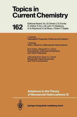 Advances in the Theory of Benzenoid Hydrocarbons II - Topics in Current Chemistry 162 (Paperback)