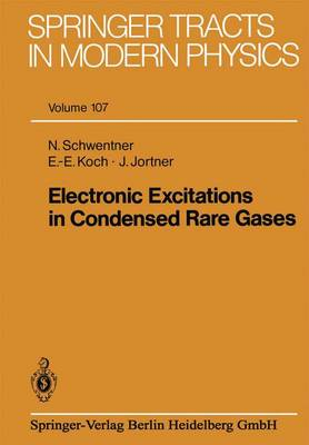 Electronic Excitations in Condensed Rare Gases - Springer Tracts in Modern Physics 107 (Paperback)
