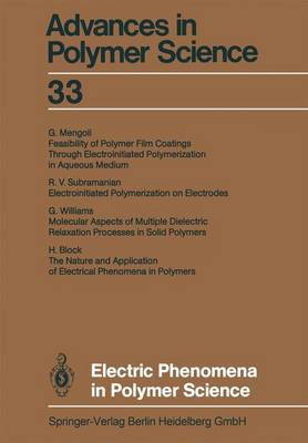 Electric Phenomena in Polymer Science - Advances in Polymer Science 33 (Paperback)