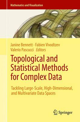 Topological and Statistical Methods for Complex Data: Tackling Large-Scale, High-Dimensional, and Multivariate Data Spaces - Mathematics and Visualization (Hardback)