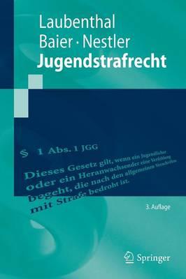 Jugendstrafrecht - Springer-Lehrbuch (Paperback)