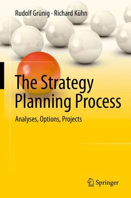 The Strategy Planning Process: Analyses, Options, Projects (Hardback)