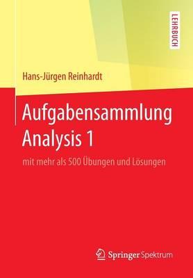 Aufgabensammlung Analysis 1: Mit Mehr ALS 500  bungen Und L sungen (Paperback)