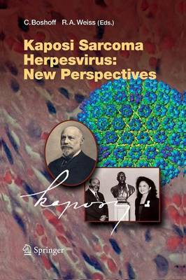 Kaposi Sarcoma Herpesvirus: New Perspectives - Current Topics in Microbiology and Immunology 312 (Paperback)