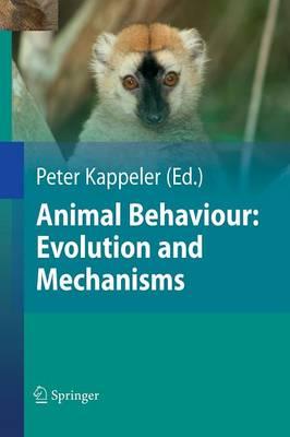Animal Behaviour: Evolution and Mechanisms (Paperback)