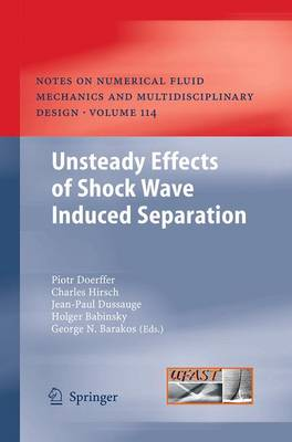 Unsteady Effects of Shock Wave induced Separation - Notes on Numerical Fluid Mechanics and Multidisciplinary Design 114 (Paperback)