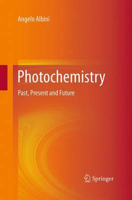 Photochemistry: Past, Present and Future (Paperback)
