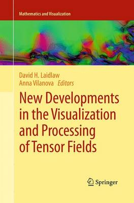 New Developments in the Visualization and Processing of Tensor Fields - Mathematics and Visualization (Paperback)