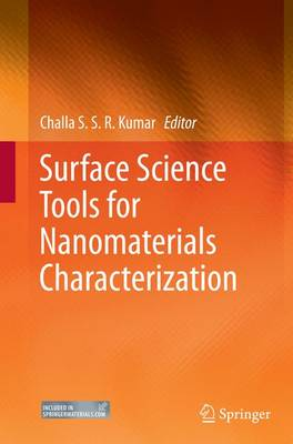 Surface Science Tools for Nanomaterials Characterization (Paperback)