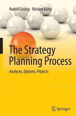 The Strategy Planning Process: Analyses, Options, Projects (Paperback)