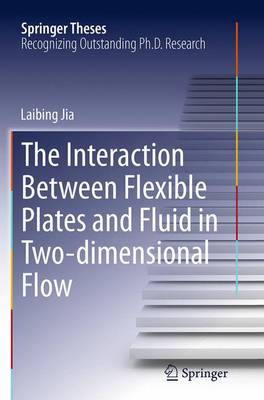 The Interaction Between Flexible Plates and Fluid in Two-dimensional Flow - Springer Theses (Paperback)