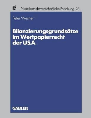 Bilanzierungsgrunds tze Im Wertpapierrecht Der U.S.A. - Neue Betriebswirtschaftliche Forschung (Nbf) 28 (Paperback)