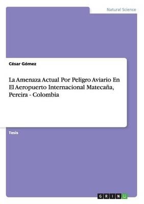 La Amenaza Actual Por Peligro Aviario En El Aeropuerto Internacional Mateca a, Pereira - Colombia (Paperback)