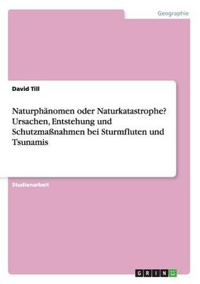 Naturph nomen Oder Naturkatastrophe? Ursachen, Entstehung Und Schutzma nahmen Bei Sturmfluten Und Tsunamis (Paperback)