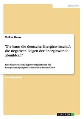 Wie Kann Die Deutsche Energiewirtschaft Die Negativen Folgen Der Energiewende Abmildern? (Paperback)