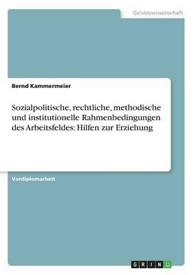 Sozialpolitische, Rechtliche, Methodische Und Institutionelle Rahmenbedingungen Des Arbeitsfeldes: Hilfen Zur Erziehung (Paperback)