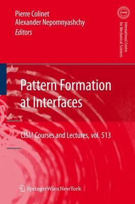 Pattern Formation at Interfaces - CISM International Centre for Mechanical Sciences 513 (Hardback)