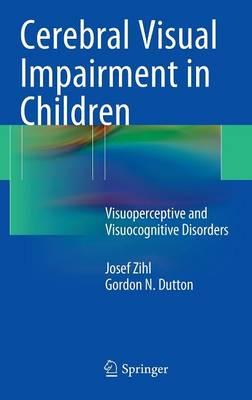 Cerebral Visual Impairment in Children: Visuoperceptive and Visuocognitive Disorders (Hardback)