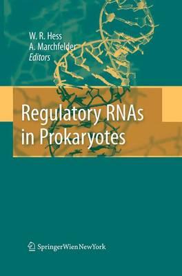 Regulatory RNAs in Prokaryotes (Paperback)