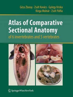 Atlas of Comparative Sectional Anatomy of 6 invertebrates and 5 vertebrates (Paperback)