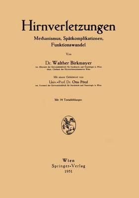 Hirnverletzungen: Mechanismus, Spatkomplikationen, Funktionswandel (Paperback)
