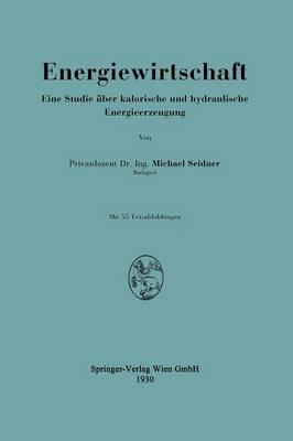 Energiewirtschaft: Eine Studie �ber Kalorische Und Hydraulische Energieerzeugung (Paperback)