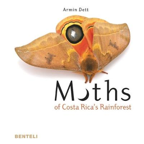 Moths of Costa Rica's Rainforest (Hardback)