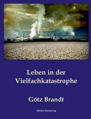 Leben in Der Vielfachkatastrophe (Paperback)