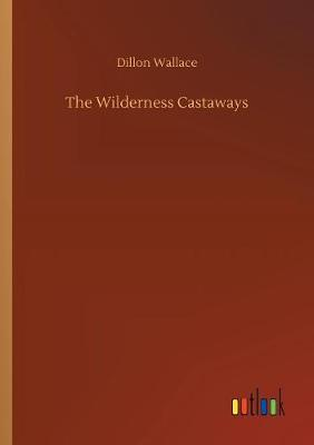 The Wilderness Castaways (Paperback)