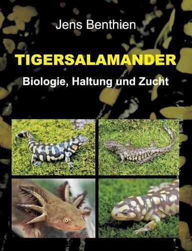 Tigersalamander (Paperback)
