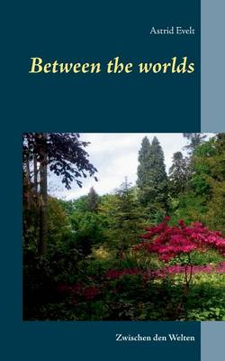 Between the Worlds (Paperback)