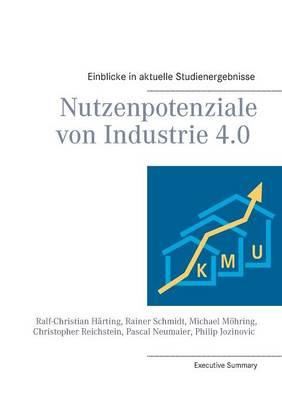 Nutzenpotenziale Von Industrie 4.0 (Paperback)